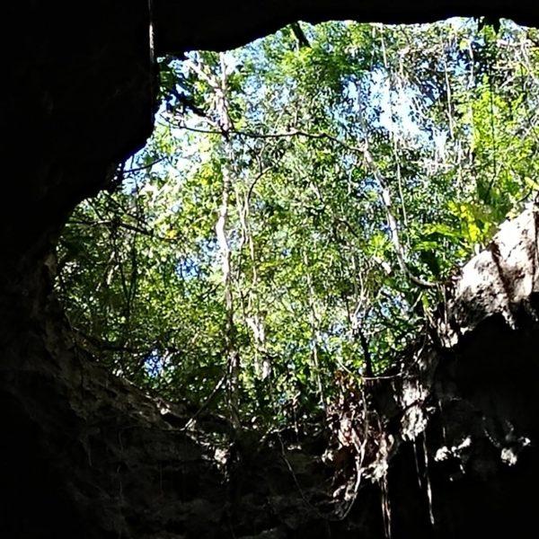 Cenote @ Lol-tun Cave