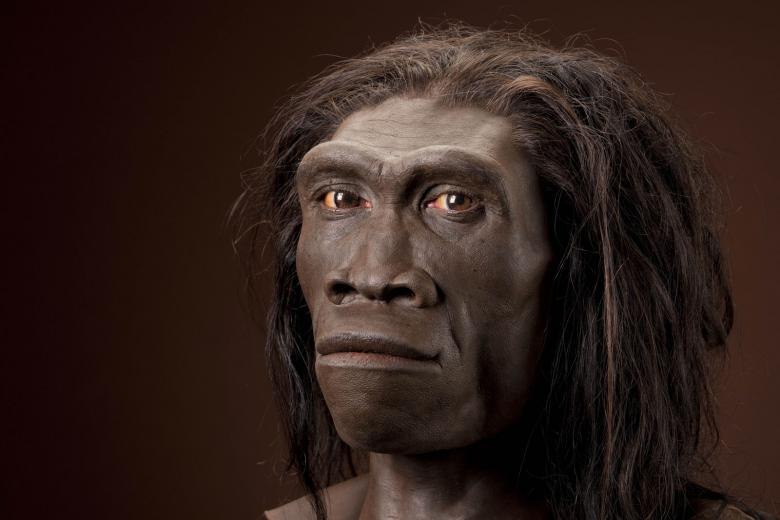 Out of Australia and Into Africa Theory – Human Origins Rewritten