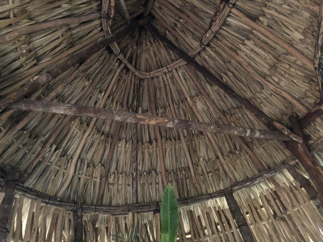 Mayan-house-thatch-roof